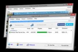torrent download free windows xp